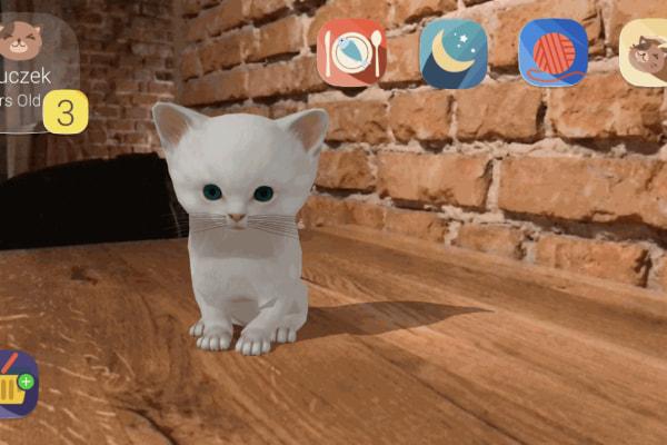 AR pet cat